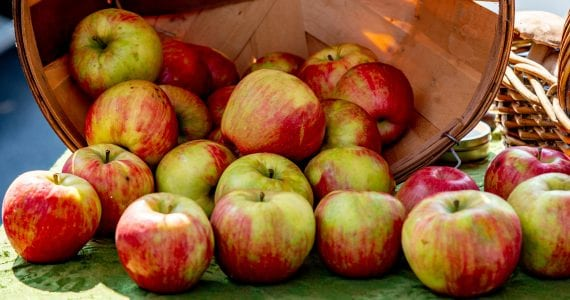 Bad Apples will Spoil the Barrel and Much More